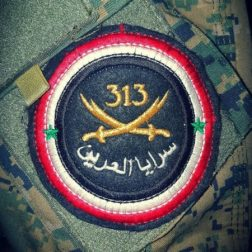 Logo of the Sarāyā al-ʿArīn, a Latakian Alawite militia fighting in the Syrian Civil War.